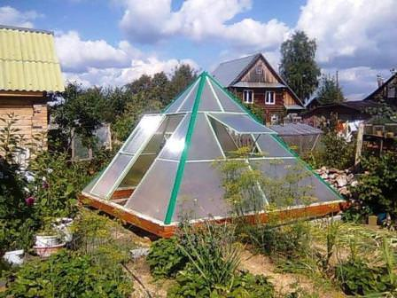 Теплица Пирамида фото