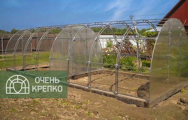 кремлевскую теплицу спб